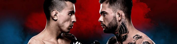 Featured image for 'UFC Fight Night: Almeida vs Garbrandt'