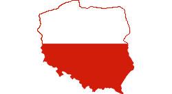 Polskie MMA rozpiska Logo