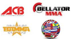 Rozpiski MMA